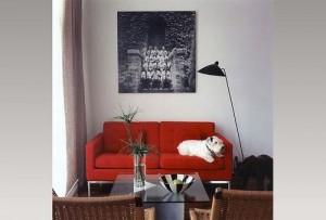 decoracion-salon-1